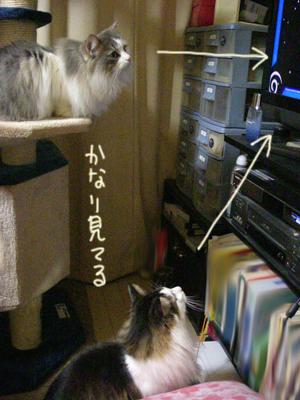 Blog201201302